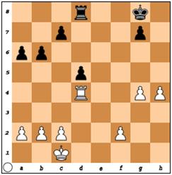 EvertStevenSchaken